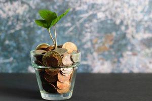 כוס זכוכית עם מטבעות, ועלים שצומחים ממנו